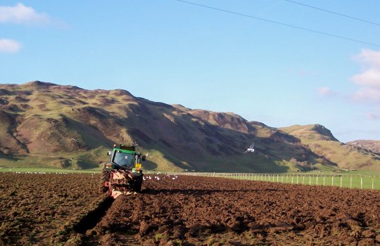 June 06, Ploughing the field